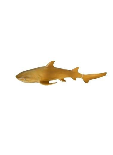 ASYA Oyuncak Asya Oyuncak 21616E022/25 Asya Renkli Vahşi Deniz Hayvan Oyun Seti Renkli